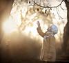 Прикосновение... (olgafler) Tags: girl whitedress dream hands sunset ray