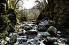 Il fiume Isonzo e le cascate Kozjak (Slovenja) (giannizigante) Tags: caporetto kozjak slovenia cascate