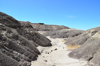 Bisti/De-Na-Zin Wilderness 82