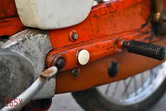 DSC_0667 Mo (golfC65Y) Tags: c65ไฟตก c65y c65ไฟต่ำ cub c65d c65 c100 classic c102 c105 ct ca100 ca102 cm90 cm91 ca105 supercub motorcycle honda thailand vintage super ホンダ スーパーカブ カブ