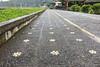 Patterned Paths 6764 (Ursula in Aus (Away Travelling)) Tags: asia bali puraulundanubratan tabanancandikuning temple templeulundanubratan iphone iphone6 indonesia bratan beratan