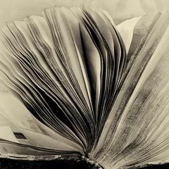le vieux livre-the old book (jemazzia) Tags: intérieur inside livre book libro buch boek livro pages monochrome
