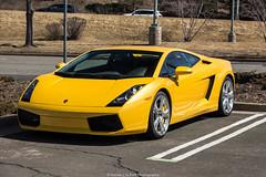 Perfect (Hunter J. G. Frim Photography) Tags: supercar colorado lamborghini gallardo lp5604 giallo yellow v10 awd coupe lamborghinigallardo