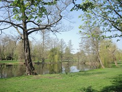 Im Südpark, Berlin-Spandau , NGIDn403980666 (naturgucker.de) Tags: ngidn403980666 naturguckerde südpark berlin cwolfgangkatz