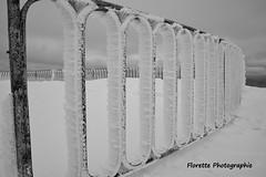 Terrasse réfrigérée (Florette Photographie) Tags: montventoux terrasse montserein geantdeprovence bedoin sault col neige vélo cyclotourime tourdefrance nikon d600 france francia montagne pelé randonnée moutain europe vaucluse