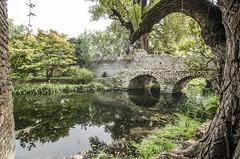 Ninfa : Ponte del Macello ,nel primo autunno (sandromars) Tags: italia lazio latina ninfa pontedelmacello autunno