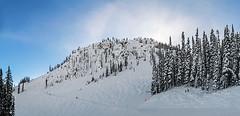 Blaster Panorama (DCZwick) Tags: show winter ski skiresort mountain mountains rockymountains canadianrockies kickinghorsemountainresort khmr golden britishcolumbia bc canada pentaxq7 pentax01standardprime blaster redemptionridge pentaxart
