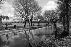 Strolling Through Serenity (JamieHaugh) Tags: rufford liverpool england uk gb greatbritain sony a6000 outdoors blackwhite blackandwhite bw monochrome figures couple stroll walk serenity canal water trees grass peace quiet calm reflections nature ilce6000 zeiss