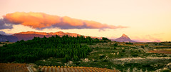 Sunset landscape. Rioja Alavesa. (hajavitolak) Tags: sunset landscape paisaje paisvasco atardecer alava riojaalavesa nubes naturaleza nature clouds sinespejo csc evil mirrorles sony sonya7ii sonya7m2 zeiss za zeiss5518za zeiss5518 green greenandorange