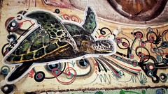 Maturin is looking for Pennywise... (MFPolako) Tags: maturin pennywise bahiablanca argentina ciudad city bahiense barrio highcontrast streetphotography streetart graffiti urbanart popart bricks tortuga turtle pintura arte artecallejero mural wall urban painting it terrenosferroviarios parquenoroeste ferroviario urbex discarded abandoned abandon forgotten decay urbandecay railroad urbanexploration calle street callejero art