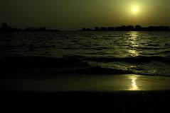(y.kobayashi) Tags: nikon d750 35mm f14 distagon zeiss nature japan sea seaside beach sun sky wave water yellow chiba