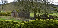 Mossy wall in Peter Dale. (A tramp in the hills) Tags: wall mossy peterdale derbyshire