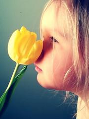 Bloom like a flower (Susanna Valkeinen) Tags: flower tulip daughter