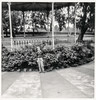 boy posing by the bandstand (Colin John Ford) Tags: found old vintage hexham bandstand