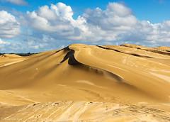 Dune Pyramid (Mimi Ditchie) Tags: oceanodunes clouds dunes sanddunes oceanodunesstatepark getty gettyimages mimiditchie mimiditchiephotography droh dailyrayofhope