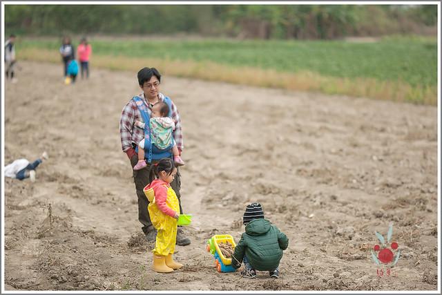 火龍果園星光野餐Ⅱ 找地瓜 烤地瓜 吃地瓜 (6)