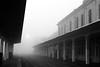(Walter Daniel Fuhrmann) Tags: niebla fog ciudad city dark laplata meridianov