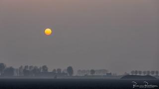 Sunset and fog