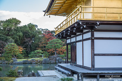 The Gardens of Kinkaku-ji (DanaMichelle309) Tags: goldenpavilion japan kinkakuji kyoto shrine travel kyōtoshi kyōtofu jp