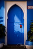 Do not disturb (Pablo Arrigoni) Tags: riad marruecos morroco trip viaje travel africa hotel donodisturb nomolestar azul color blue colores colors colours shadows shadow sombras sombra plant planta door puerta etiqueta label sign letrero room habitación ciudadazul bluecity canon eos eos70d 18135 70d city ciudad morning mañana daylight luzdedia outside outdoor red rojo orientstyle estilooriental chefchaoen