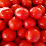 Tomatoes thumbnail