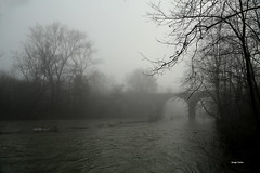 1N6A4238. Printemps pourri ( UNIXetvous ) Tags: sky tree mist eau water rivière cèze river