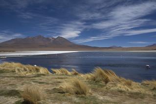 Lagune Honda, Hedionda e Canapa - Bolivia
