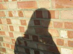 Monday, 23rd, 2018, A day of contrasts IMG_6886 (tomylees) Tags: essex morning spring april 2018 23rd monday carol wall brick shadow sunshine