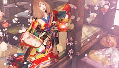 868 (Tomomi alpaca Homewood) Tags: tomoto rejaponica kimono hanatemari oiran 8f8 sakura marukado rh mb cat neko spring 春 mudskin aso blossom petal taketomi