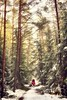 Unity (der_peste (on/off)) Tags: ladywithhat australianshepherd aussie ladyinred redcoat trees snow woods pathway path walk forest dog woman