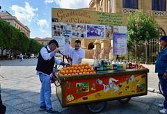 """""""Grattatella all'antica"""" in piazza Massimo (costagar51) Tags: palermo sicilia sicily italia italy folklore storia anticando"""