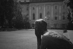 Contemplation (ericgrhs) Tags: unterdenlinden palaisdesprinzenheinrich statue uni humboldtuniversität berlin architecture gebäude building bw nikon d5200 thinking contemplating university innenhof