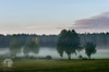 Tree line (warmianaturalnie) Tags: nature tree landscape forest fog outdoors scenics sunset grass meadow ruralscene mist morning sky autumn season beautyinnature tranquilscene sunrisedawn dawn warmia warmianaturalnie