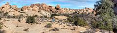 [Jurassic] National Park Panorama (Non Paratus) Tags: joshuatreenationalpark desert highdesert mojave nationalpark rocks landscape sky clouds panorama inselberg monzogranite