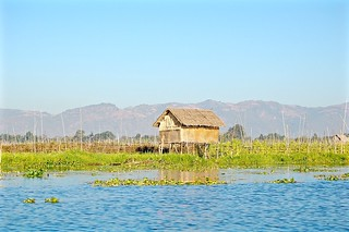 Magical Places and Things - Inle Lake (2)