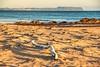 driftwood (taszee63) Tags: tasmania cooeebeach beach sand dawn sunrise autumn driftwood tablecape ocean sea bassstrait hdr 3xp