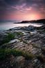 Paxariñas (jojesari) Tags: ar218g 1817 paxariñas sanxenxo pontevedra portonovo galicia ocaso sunset atardecer puestadesol filtros