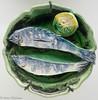 Picasso - Ceramics (Hans Olofsson) Tags: art keramik konst kunst louisiana picasso ceramic fat fish fisk fiskar ceramica