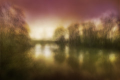 untitled54 (Valeria Rossi Brichese) Tags: treviso colors wind green trees water river sky lights