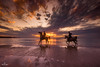 Horse Riders at Sunset (stollman_ron) Tags: animal horse sky clouds sea seascape travel nature israel nikon sand d600