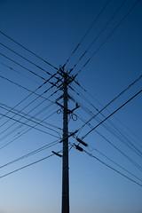 空 (23fumi@fuyunofumi) Tags: ilce7rm3 sony 28mm ainikkor28mmf28s dusk twilight a7r3 sky blue line cable utilitypole pole 電線 ソニー ニコン ニッコール 空 manualfocus fmount wire