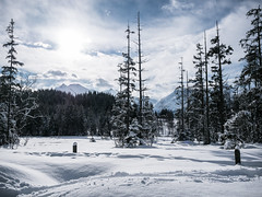 Winter Wonderland - Paßthurn, Austria (Sebastian Bayer) Tags: bäume schnee drausen wandern winter outdoor sport himmel lanschaft schneeschuhwanderung pasthurn weis natur wolken österreich