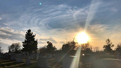 """""""The important thing is not to stop questioning. Curiosity has its own reason for existing."""" ―Albert Einstein 🌅 (anokarina) Tags: ⛅️ ☁️ 🌞 ☀️ 🌅 appleiphone8 stronghold stpaulsepiscopalchurch rockcreekparish rockcreekcemetery tombstones headstones graves tombs graveyard sun sunset sunlight sunshine sunbeams rays goldenhour silhouettes shadows clouds trees treeline dcist"""