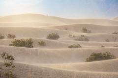 Sandblasted (Jake Rogers Photo) Tags: layers sandstorm storm goldenhour goldenlight sand dunes windy sanddunes nationalpark california deathvalleynationalpark deathvalley sunset