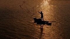 DSC_1643 (rajashekarhk) Tags: fishing evening enviornment east eastcoastroad ecr outskirts backwaters mutthukadu chennai colours capital colour southindia sunset silhouette nikon net rajashekar red hkr
