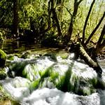 Ruisseau dans le causse thumbnail