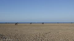 Marée basse sur la côte Normande 11 (letexierpatrick) Tags: maréebase marée marine mer plage sable ciel maritime manche normandie france europe extérieur explore eau nature nikond7000 nikon colors couleurs couleur