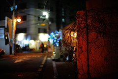 2051/1917 (june1777) Tags: snap street seoul gangnam shinsadong garosugil night light canon eos 5d ef 50mm f10 1600 clear