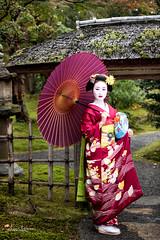 Mameryu - Maiko in Kyoto 19 (JUNEAU BISCUITS) Tags: hawaiiphotographer portrait portraiture model modeling beauty nikon nikond810 geisha maiko japan kyoto gion