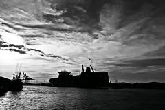 Siluetas en el puerto (alestaleiro) Tags: boat barco bw mono monocromo monochrome boats itajai navegantes ferry ferryboat navio ship silohuettes silouhettes siluetas bianconero marina porto puerto docks docas alestaleiro